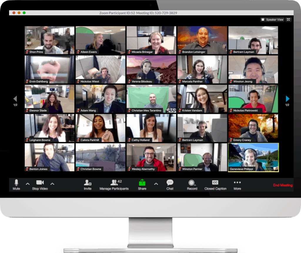 Zoom Interface for Effective Remote Meeting